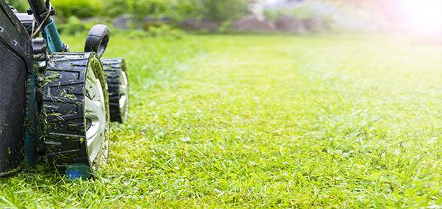 koszenie trawy Rzeszów